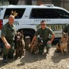 K9 and Sheriff Show and Tell