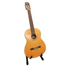 Acoustic Guitar - Alvarez
